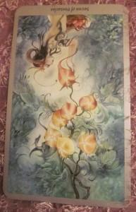 Everyday Tarot, 07/06/11: How's the garden grow? Rev Seven of Pentacles