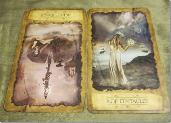ace-wands-mystic-dreamer.jpg