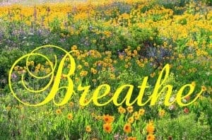 Helping Your Reader: Breathe