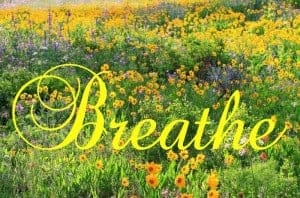 Helping Your Reader: Breathe 1