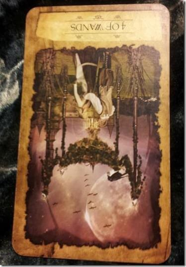 08/28/12: Noticing the Love   4 of Wands 1