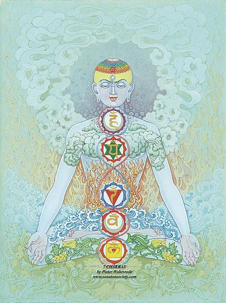 Root Chakra Gift and a Deal (for a minute)! 1