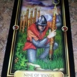 03/31/13: Finish Fulfilling thy Desire / 9 of Wands