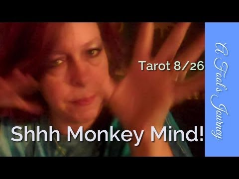 Weekly Tarot 8/26: WITHIN, Man. Monkey Mind is a Big Mouth!