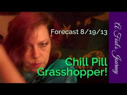 Weekly Tarot Forecast, 8/19: Chill Pill, Grasshopper! 1