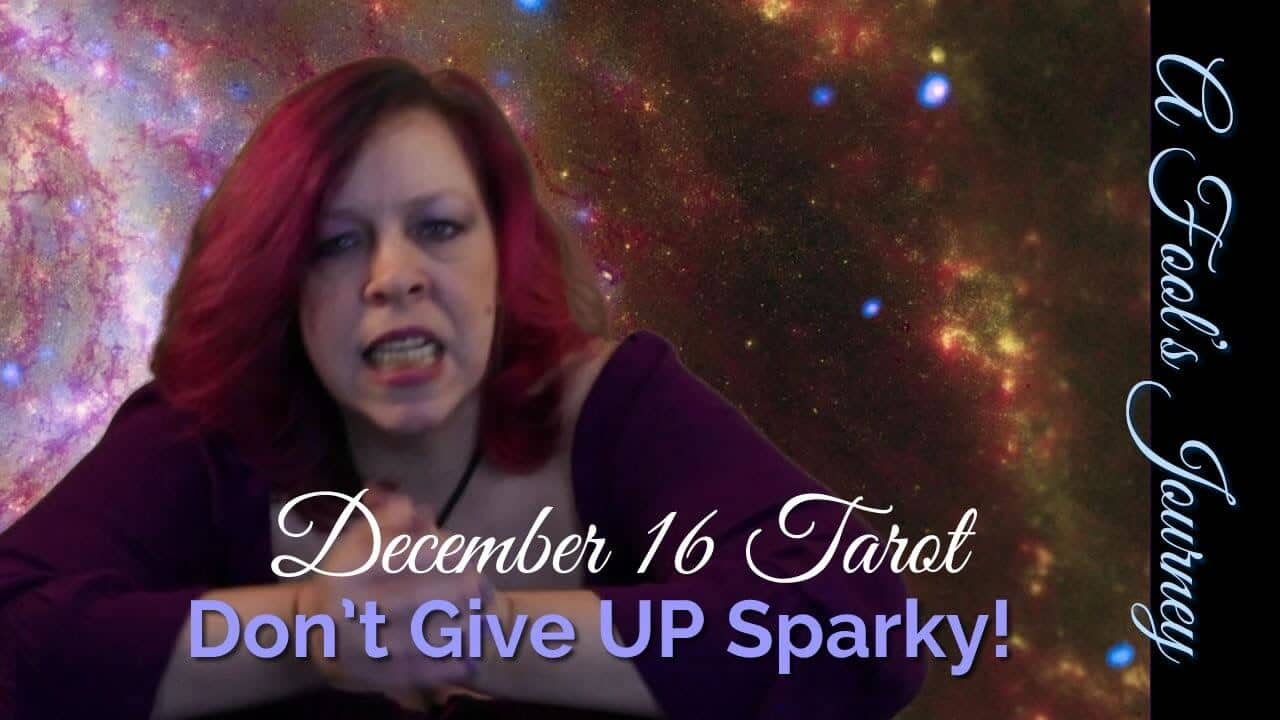 Dec. 16 Weekly Forecast: Don't Give Up, Sparky. You can do it! 1