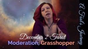 Weekly Tarot Forecast: Moderation, Grasshopper!
