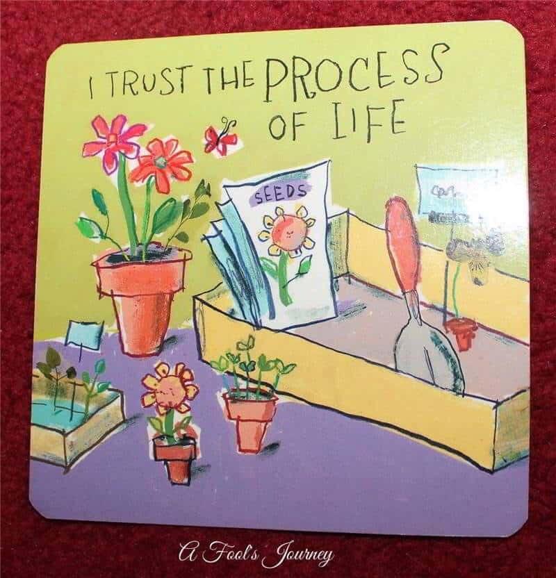 I trust the process of life.