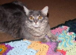 Moon Signs Blanket: A Little Woo in Crochet