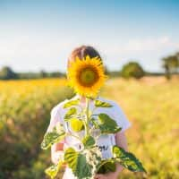 little-girl-with-sunflower-in-a-sunflower-field-picjumbo-com