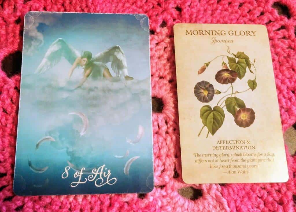 Eight of Swords: Blooms of the Moment 4