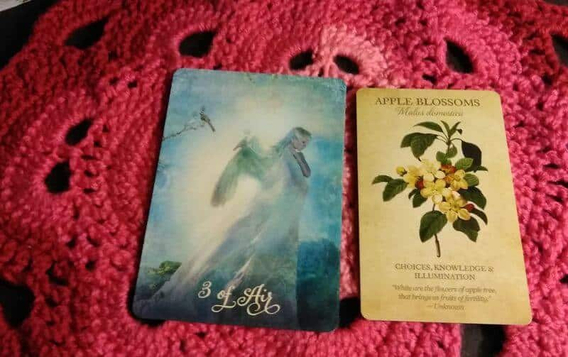 Three of Swords Tarot, Apple Blossom