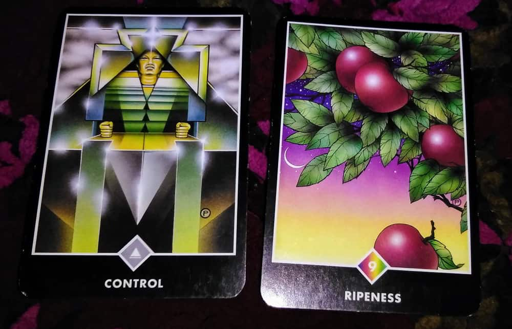 King of Swords & Nine of Pentacles: Who controls whom? 2