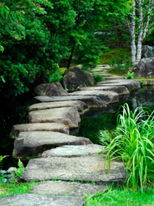 stepping_stone_path-91224015_std