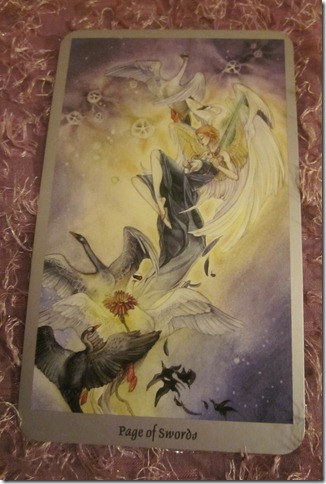 page-of-swords-tarot-forecast