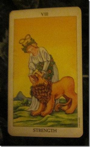 Tarot in Real Life: Strength Card has more to Say 2