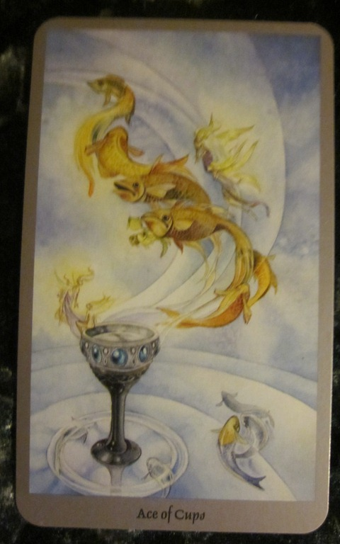 10/13/11: Compassionate Zen   Ace of Cups • A Fool's Journey